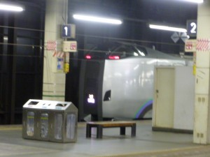 P1010320